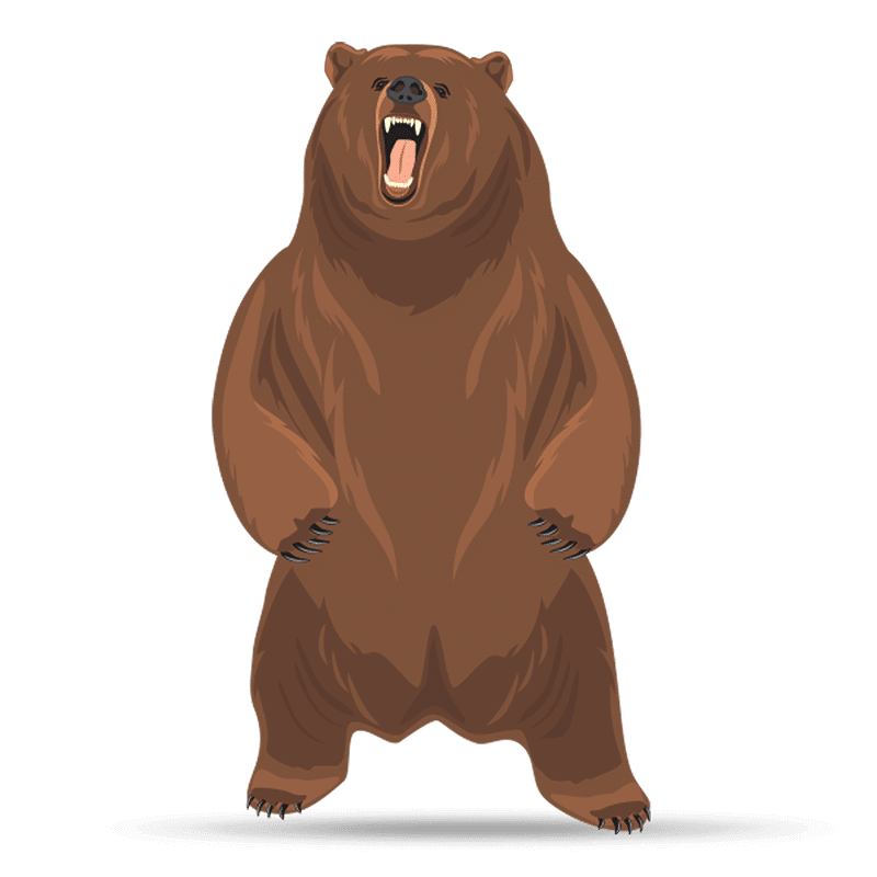 Mr. Bear - Timothy's Character